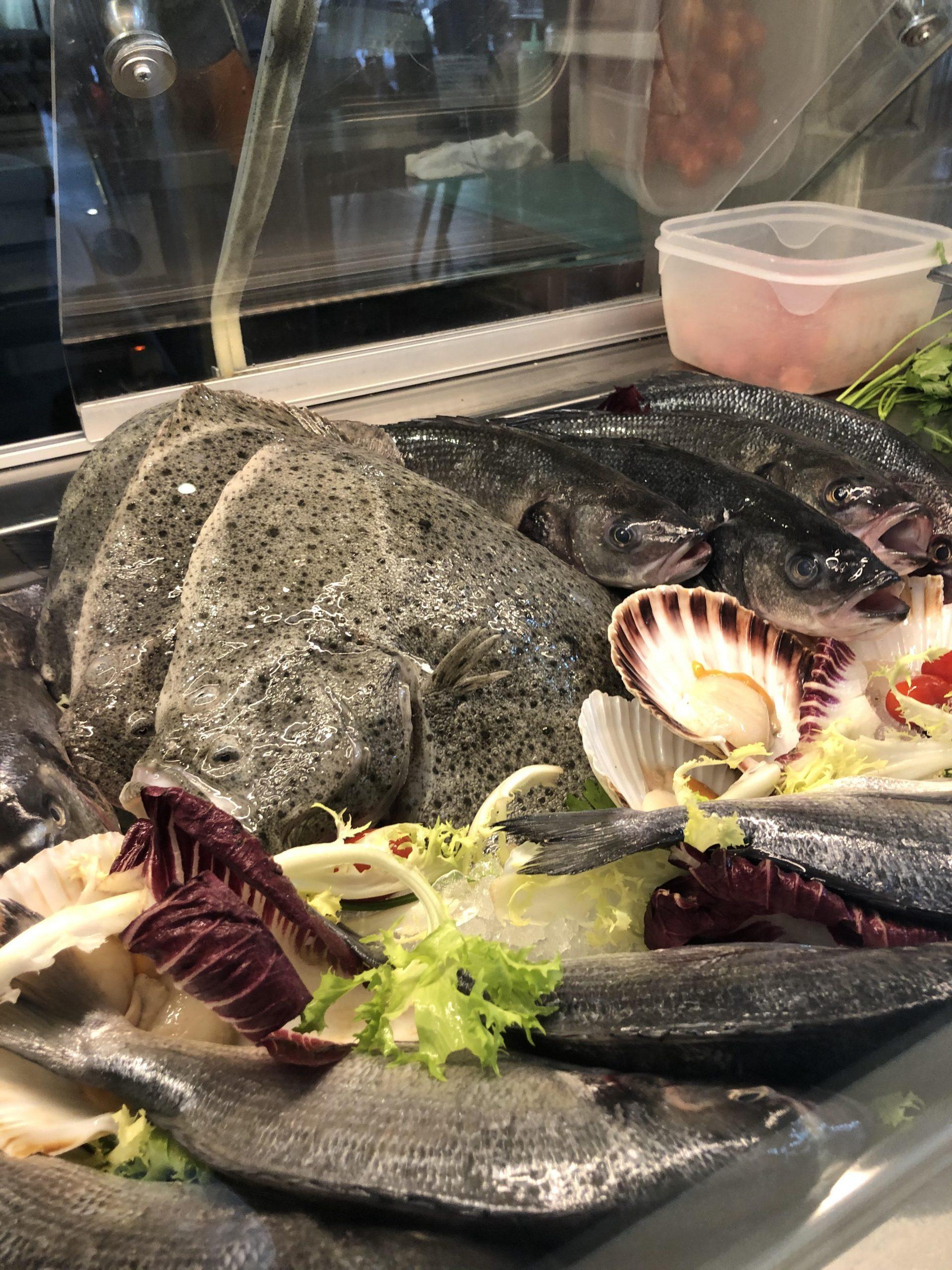 fresh-fish-2021